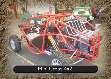 new buggy 4x4